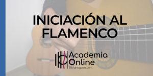Iniciación al flamenco