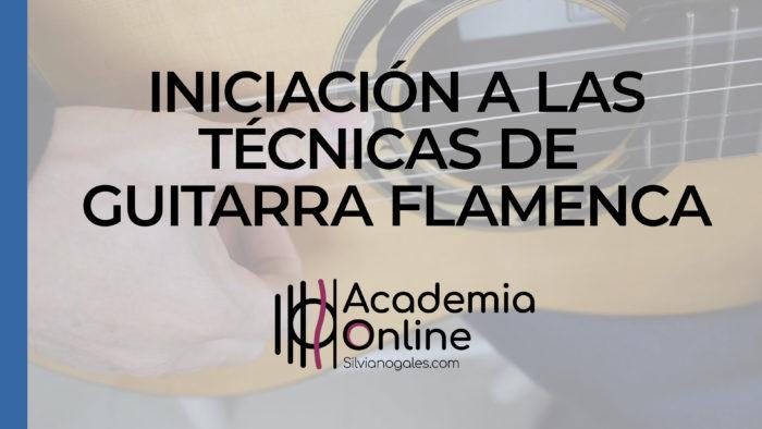 Iniciación a las técnicas de la guitarra flamenca